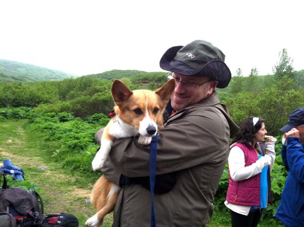 A person in rain gear holding a tri-color corgi in their arms, outdoors surrounded by greenery.